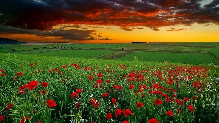 Memres 1 Beautiful Nature Wallpaper Hd Nature Desktop Landscape Wallpaper