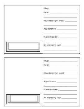 Arctic Animal Fact File Cards: simple way for students to create a research based bulletin board.  They can print out or draw a picture of their animal