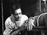 Victor Frankenstein est originaire de Cologny, dans le canton de Genève. Pendant ses études, il fait des recherches qui l'amènent à créer la vie, une créature sans nom faite de plusieurs morceaux de cadavres humains et à l'allure repoussante. La créature et le créateur entretiendront une relation amour/haine, développée au fil du roman et des adaptations cinématographiques. Petit Kevin