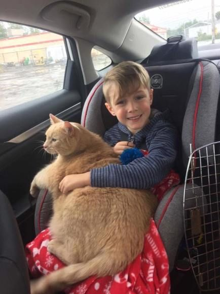 This Little Boy Picked a Senior Tabby! Easton spotted Tiny on the shelter's Facebook page and when they met for the first time, it was clear that the kitty would become the boy's best friend.