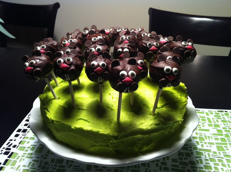 Groundhog Cake Pops