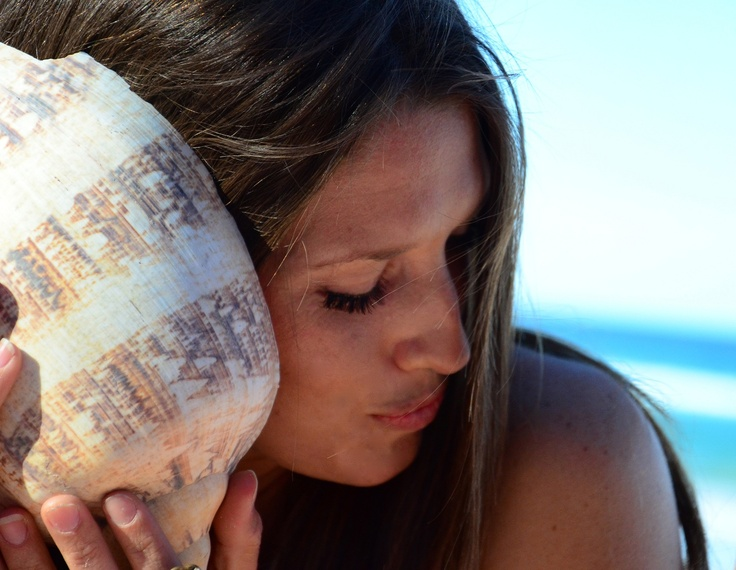 Beach shell: Beaches Shells, Beautiful Fashion
