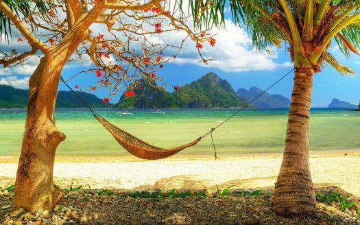 hd-strand-achtergrond-met-een-hangmat-tussen-twee-bomen-zomer-wallpaper-foto (400 pieces)