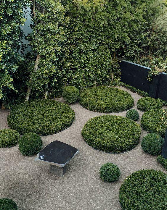 circular hedge - Google Search