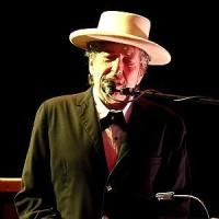 Nobel a Bob Dylan, Accademico