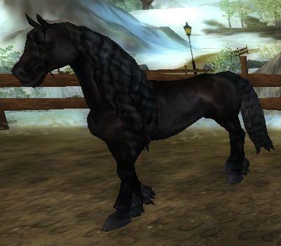 cavalo e filhote Car Tuning