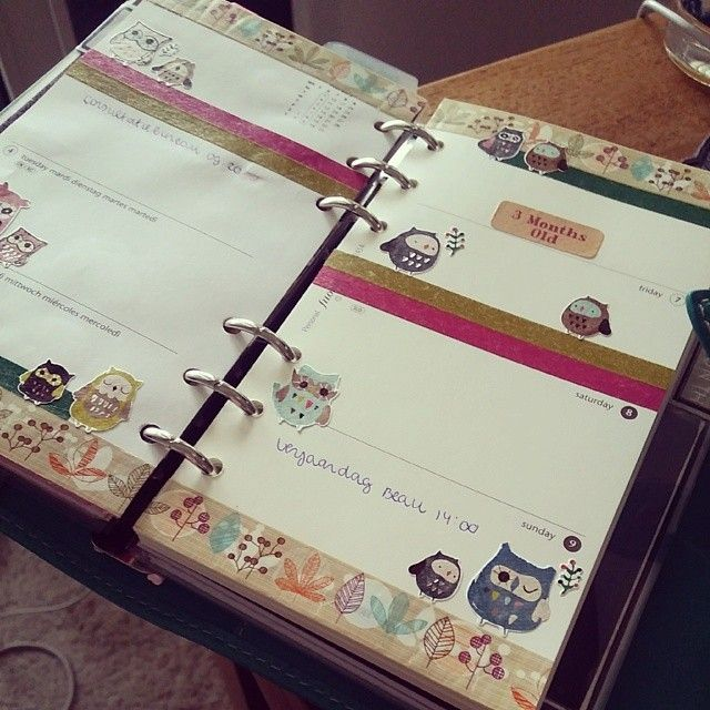 baby  Wooden owl theme. Use as a planner 4 anything.  #filofax #planneraddict #malden #aqua #owls #stickers #washitape