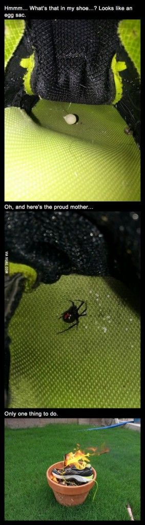 So... a black widow AND her egg sac? I can handle this....WITH FIRE!!!