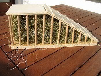 This is a great idea for the guinea pig enclosure. A ramp and hay rack in one.