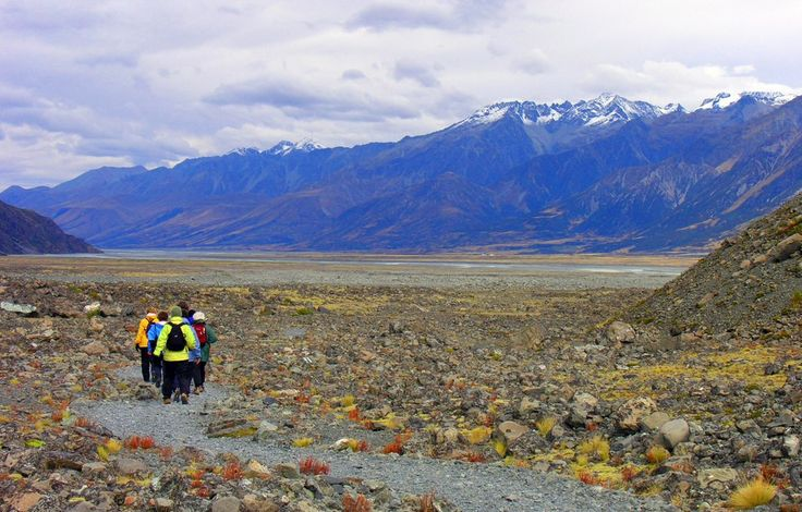 Backpacking in New Zealand – How to Get Amongst the Locals