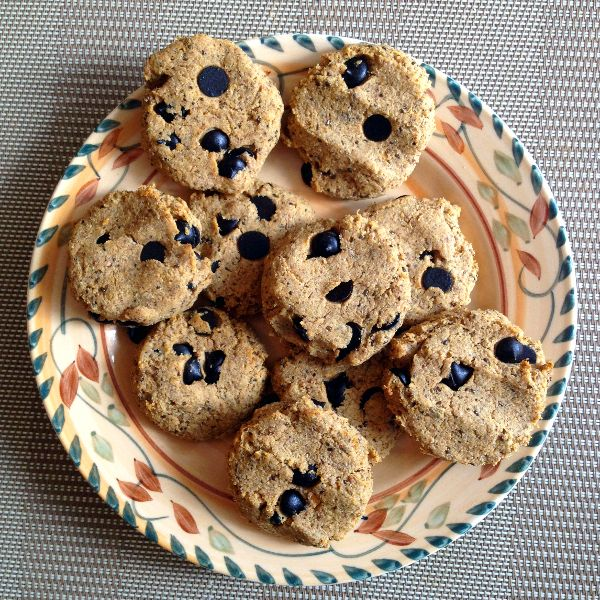 The Ultimate Candida Diet Chocolate Chip Cookie (Grain-Free, Egg-Free, Dairy-Free, Sugar-Free) | rickiheller.com