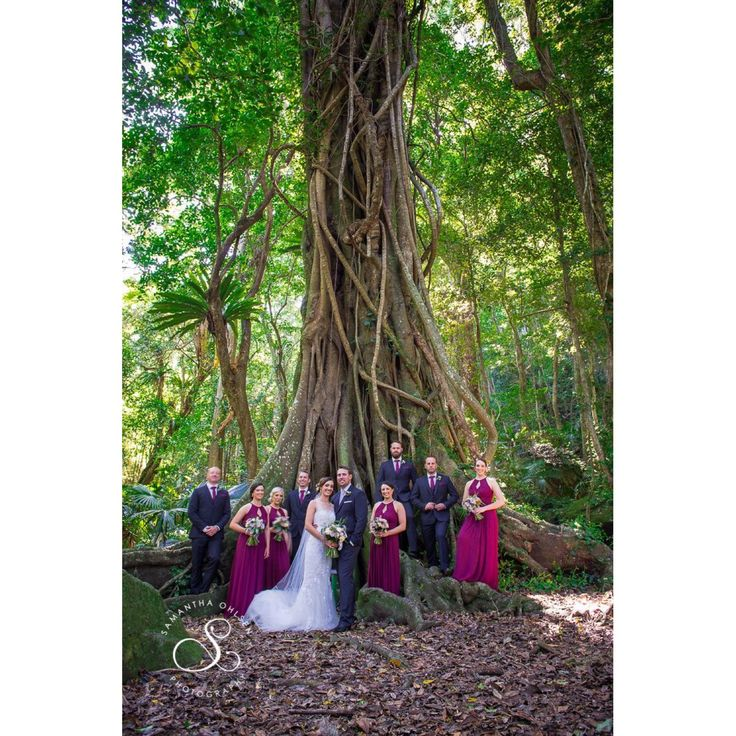 Bridal party at Mount Keira scout camp. www.samanthaohlsenphotography.com
