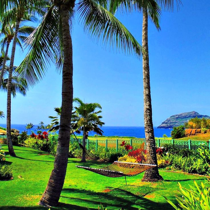 Picture perfect vacation #MarriottsKauaiLagoons #Hawaii #travel