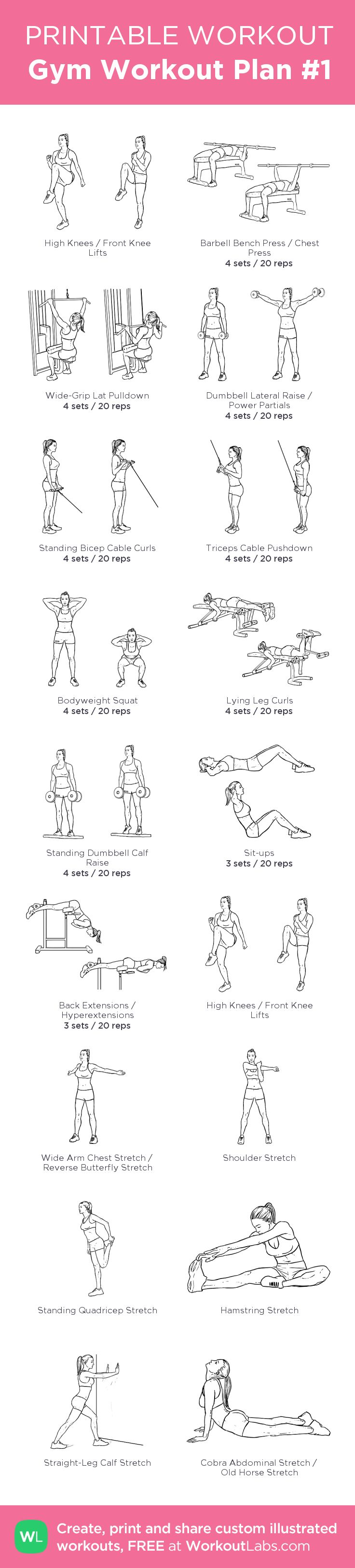 Gym Workout Plan #1 –my custom workout created at WorkoutLabs.com • Click through to download as printable PDF! #customworkout