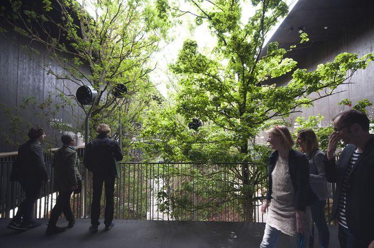 Gallery - Austria Pavilion – Milan Expo 2015 / team.breathe.austria - 18