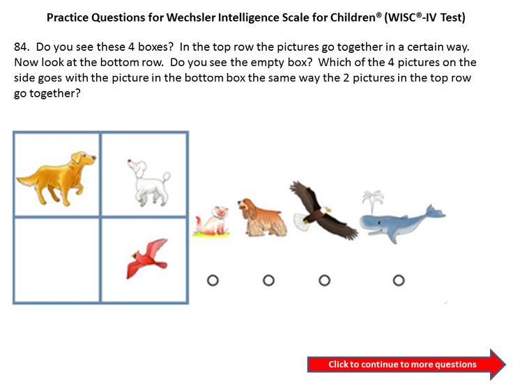 Wisc Iv And Wisc V Practice Questions And Tips on 3rd Grade Test Prep