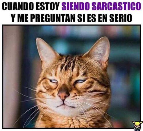 videos graciosos memes risas gifs graciosos chistes divertidas humor http://chistegraficos.tumblr.com/post/157491984350