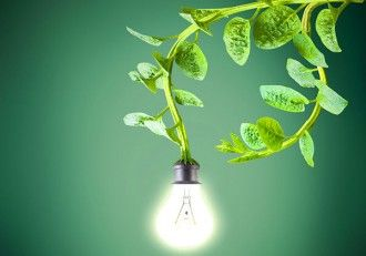 Dutch Company Powers Gadgets and Street Lights with Living Plants  #sustainability (Thank you Charles Chan for this link!)