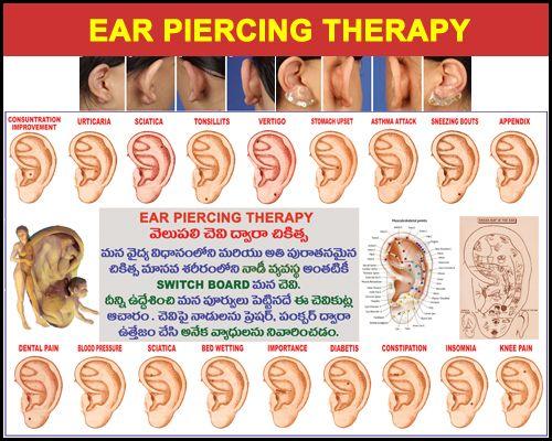 25 best images about ear piercings on pinterest school