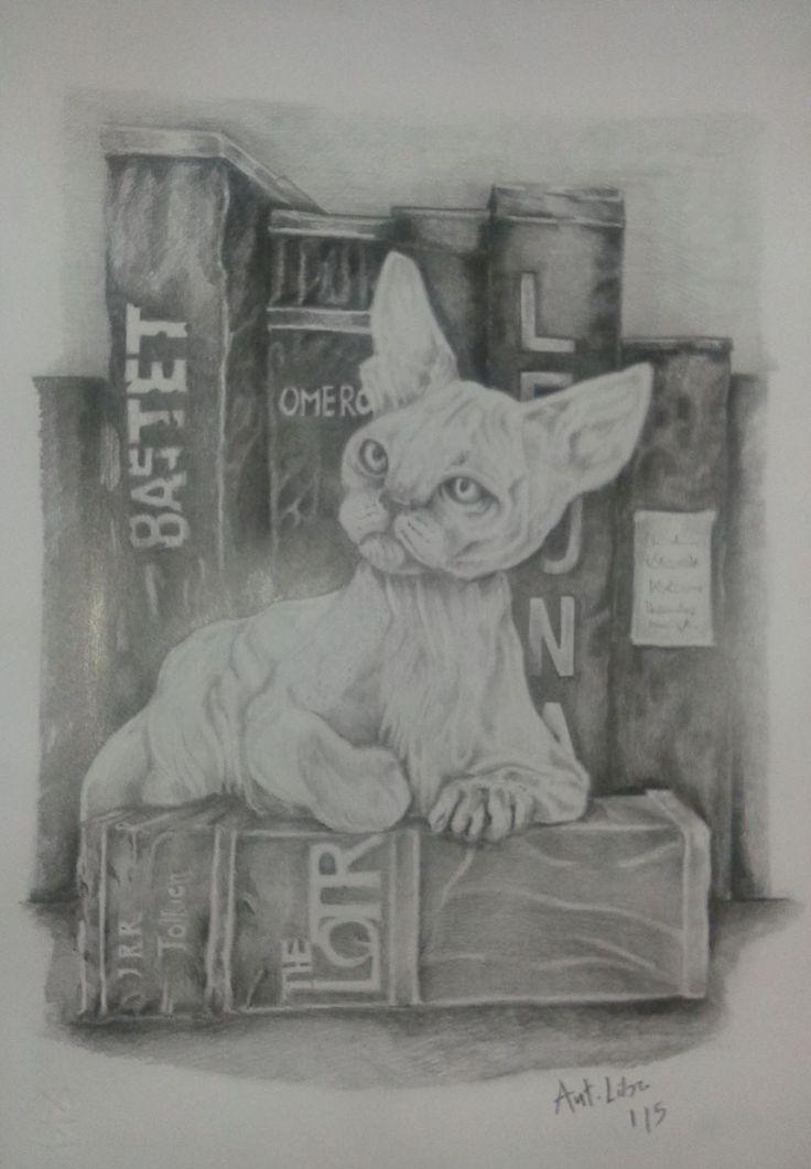 Drawing Pencil  Cat