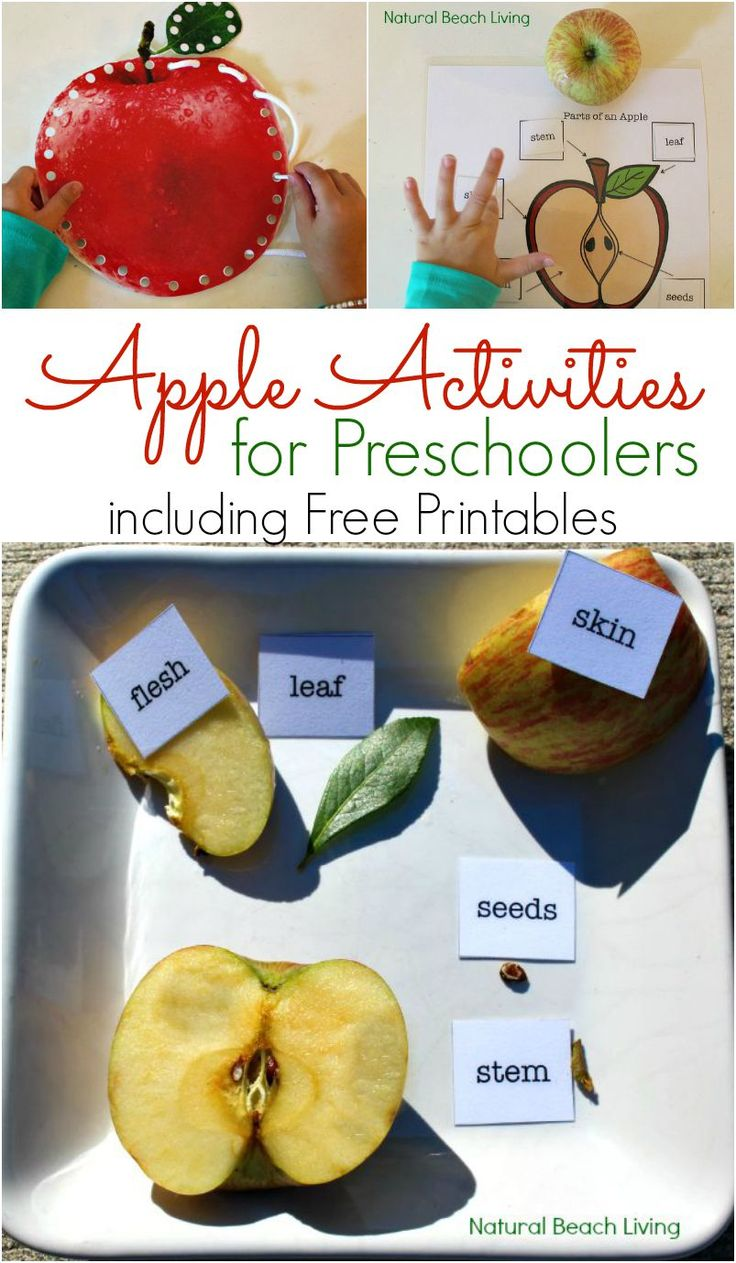 Apple Activities for Preschoolers including Free Printables from Natural Beach Living
