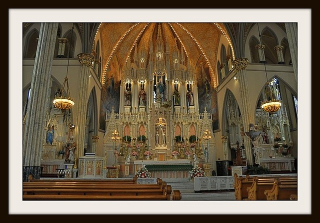 oak city catholic singles District ins and outs support the sspx  see how you can help make a donation give a mass stipend book  publications  check out our newsletter and magazine.