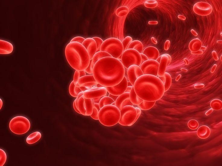 Alimentos favorables para tratar la anemia