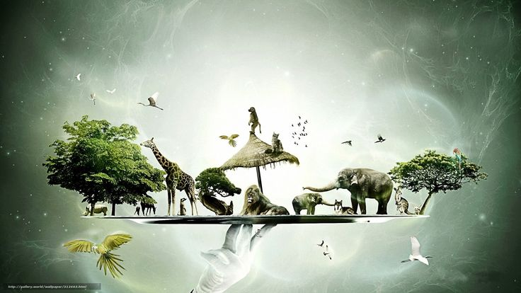 Yes Tales From Topographic Oceans Fragile Yes Wallpaper « Tiled