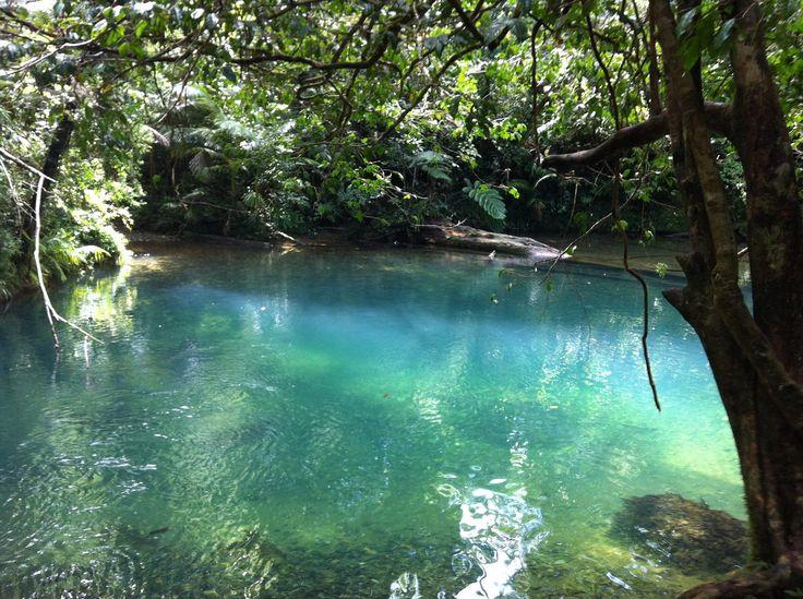 Blue Hole, Cape Tribulation, Tropical North Queensland, 2013