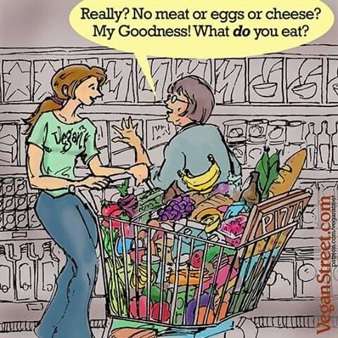 101 best images about vegan cartoons on pinterest for What is a vegetarian that eats fish