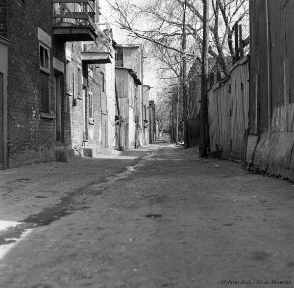Une ruelle exemplaire de Montréal, 5 avril 1966, VM94-C0824-003