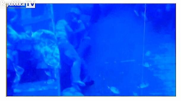 Underwater image shows couple drowned in loving embrace