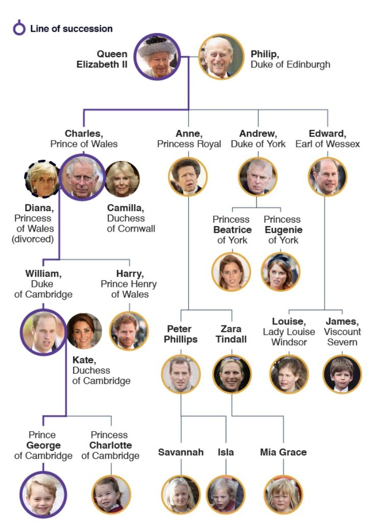 british royal family tree royal family trees queen   bbc com news uk 23272491 british