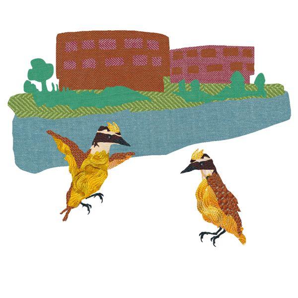 Children's book illustrations Buiksloterbreekbekkikker by dieuwertje van de moosdijk, via Behance