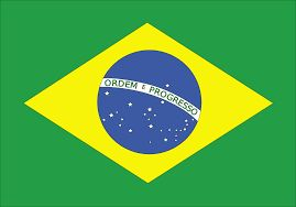 Brazil Protests: Demonstrators Storm Chamber of Deputies Demanding Military Coup