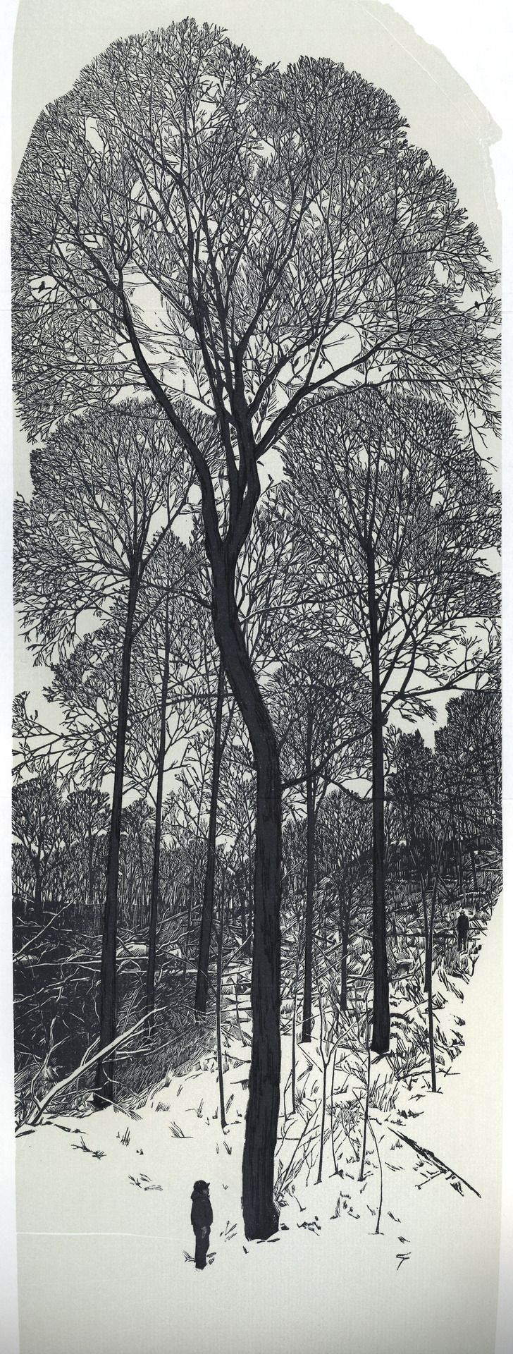 Wood engraving by Gaylord Schanilec from his book Sylvae (Stockholm, Wis.: Midnight Paper Sales, 2007)