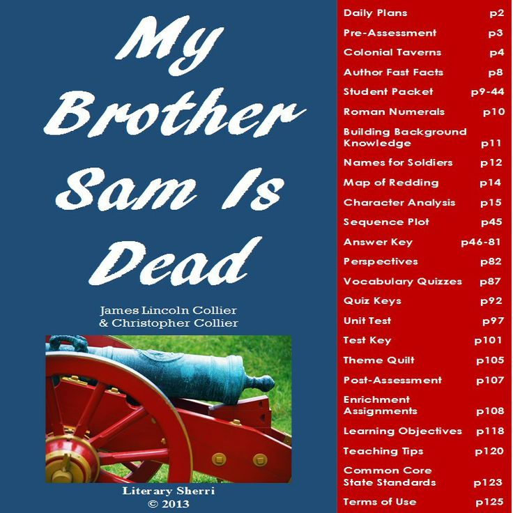 best my brother sam is dead images brother a complete 3 week unit on ldquomy brother sam is deadrdquo by james