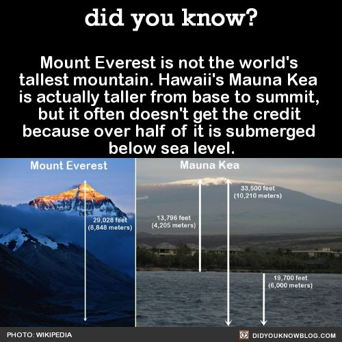 did you know? - Mount Everest is not the world's tallest mountain....