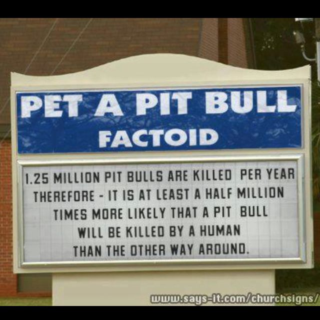 Pitbulls facts sad that many are killed