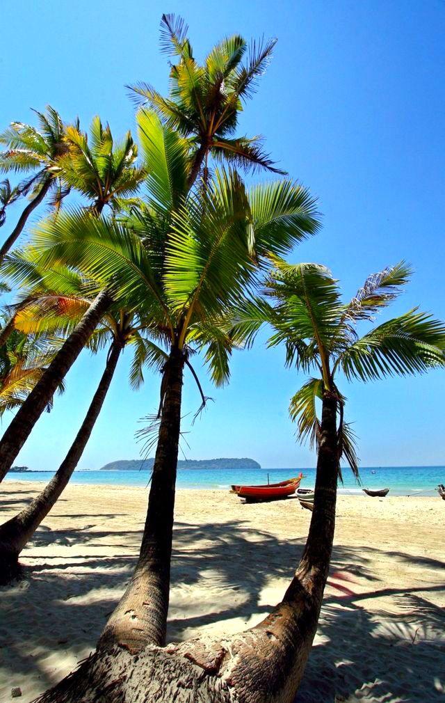 Island Palms Vacation