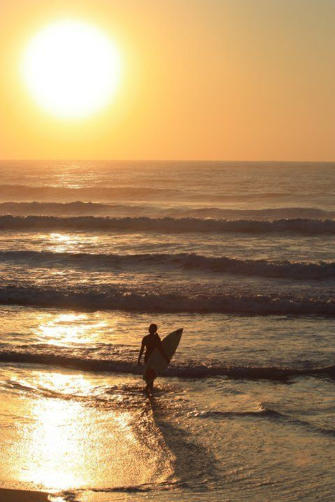 Www Bing Com1 Microsoft Way Redmond: 13 Best Images About Surf On Pinterest