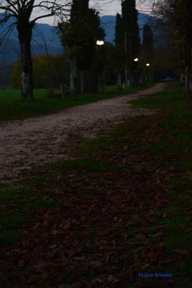 """#critica  #Lettura di """"Per una strada"""", #poesia di #EmanueleMarcuccio, a cura della poetessa e critico letterario #LuciaBonanni, che ringrazio per la sempre attenta lettura della mia poesia. Buona lettura!  http://emanuele-marcuccio.blogspot.it/2016/01/lettura-di-per-una-strada-poesia-di.html"""