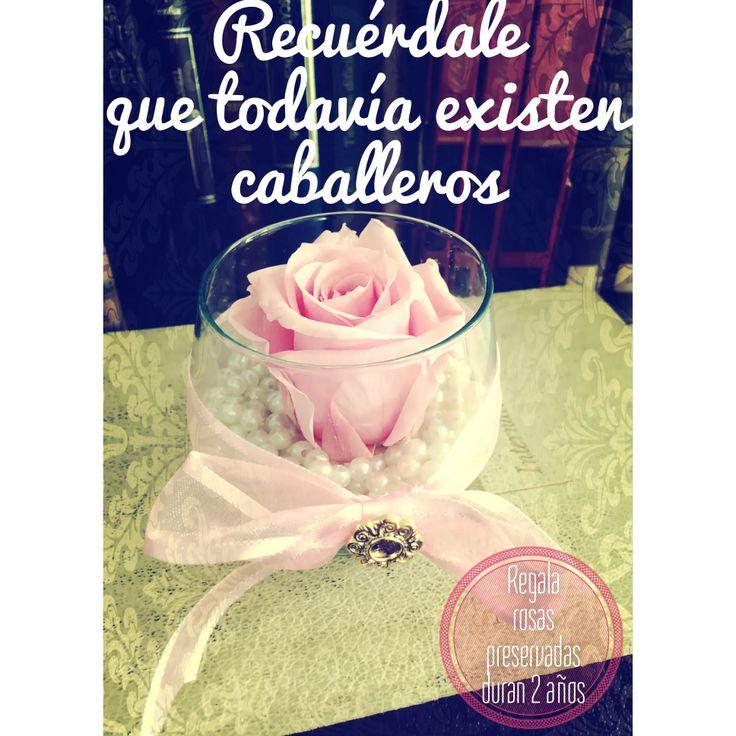 Todavía existen caballeros... Regala rosas preservadas