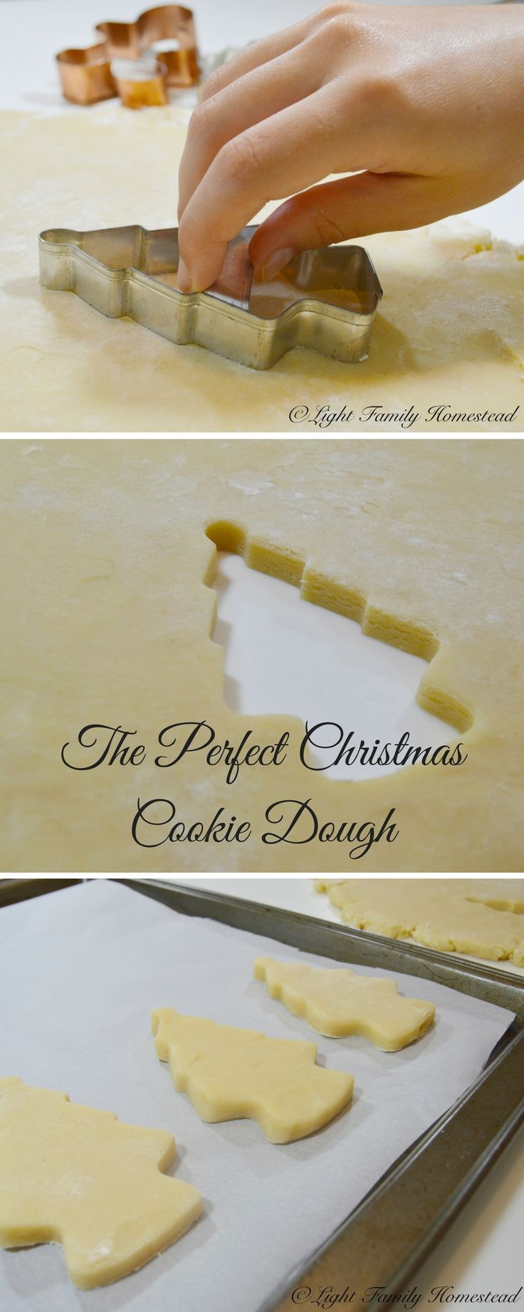 The Perfect Christmas Cookie Dough-This is sugar cookie recipe the ideal cookie dough when it comes to decorating cookies. Check it out at www.lightfamilyhomestead.com