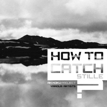 How to catch STILLE? cover art | anmoku.net