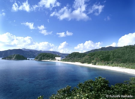 My home town;) Amami Oshima