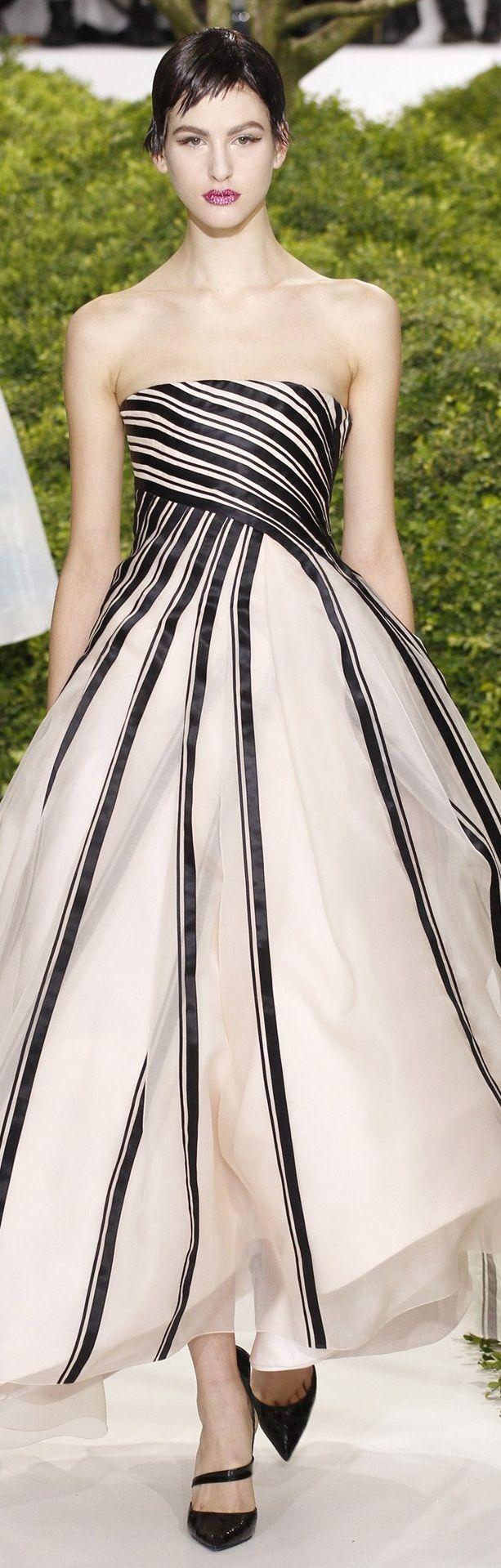 Christian Dior Haute Couture 2013 ~