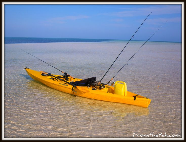 Kayaking; once you start you can't stop..