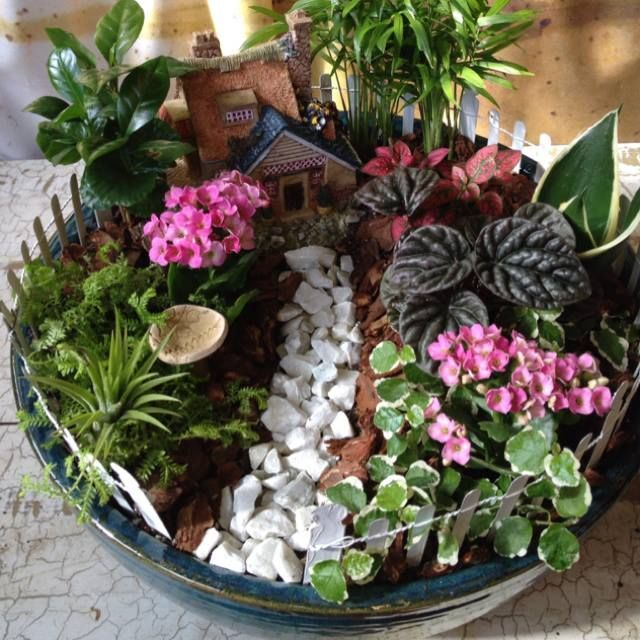 236 best Dish Gardens images on Pinterest Fairies garden Mini