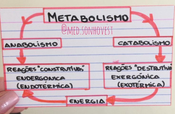 Anabolismo e Catabolismo. . . . #resumomedsonhovest #mapamental #resumos #biologia #naturais #metabolismo #catabolismo #anabolismo #enem #med #sonho